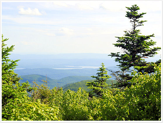 Catskill - Twin Mountain Summit