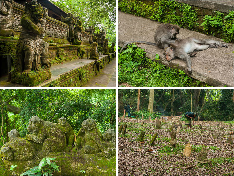 Ubud - Monkey Forest Temple and Cemetery