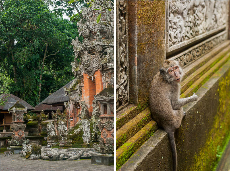 Ubud - Monkey Forest - Temple