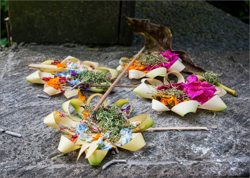 Ubud - Offerings