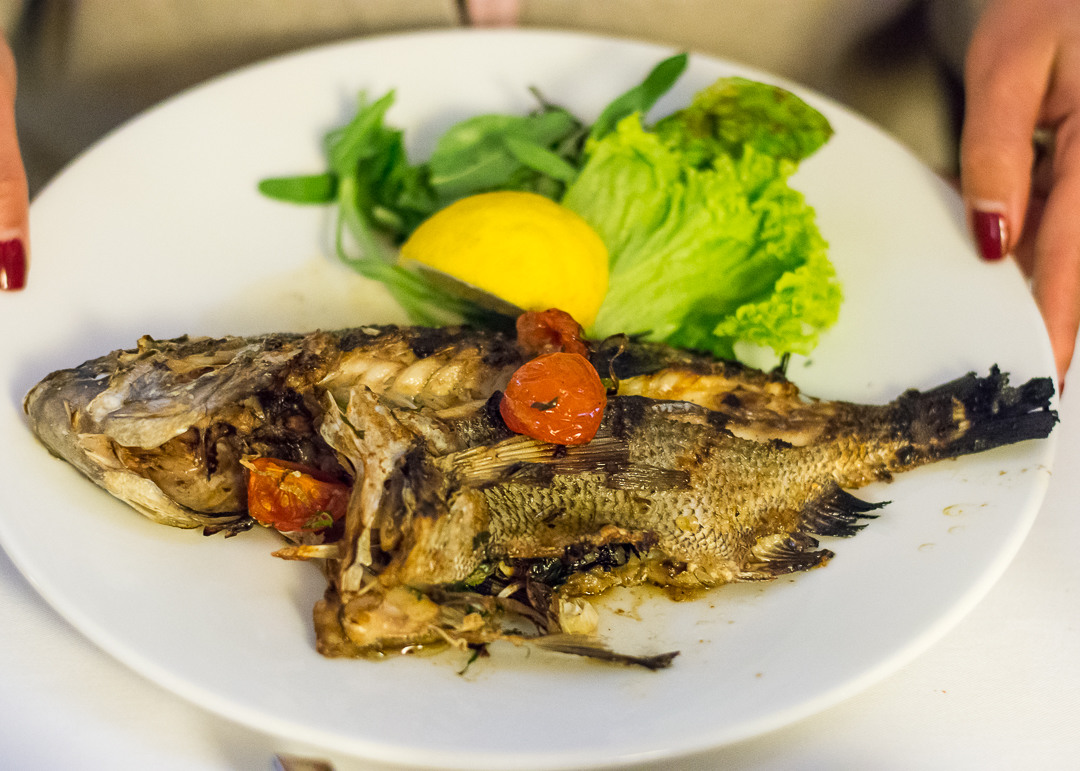 Grilled fish at Michael's - Valletta