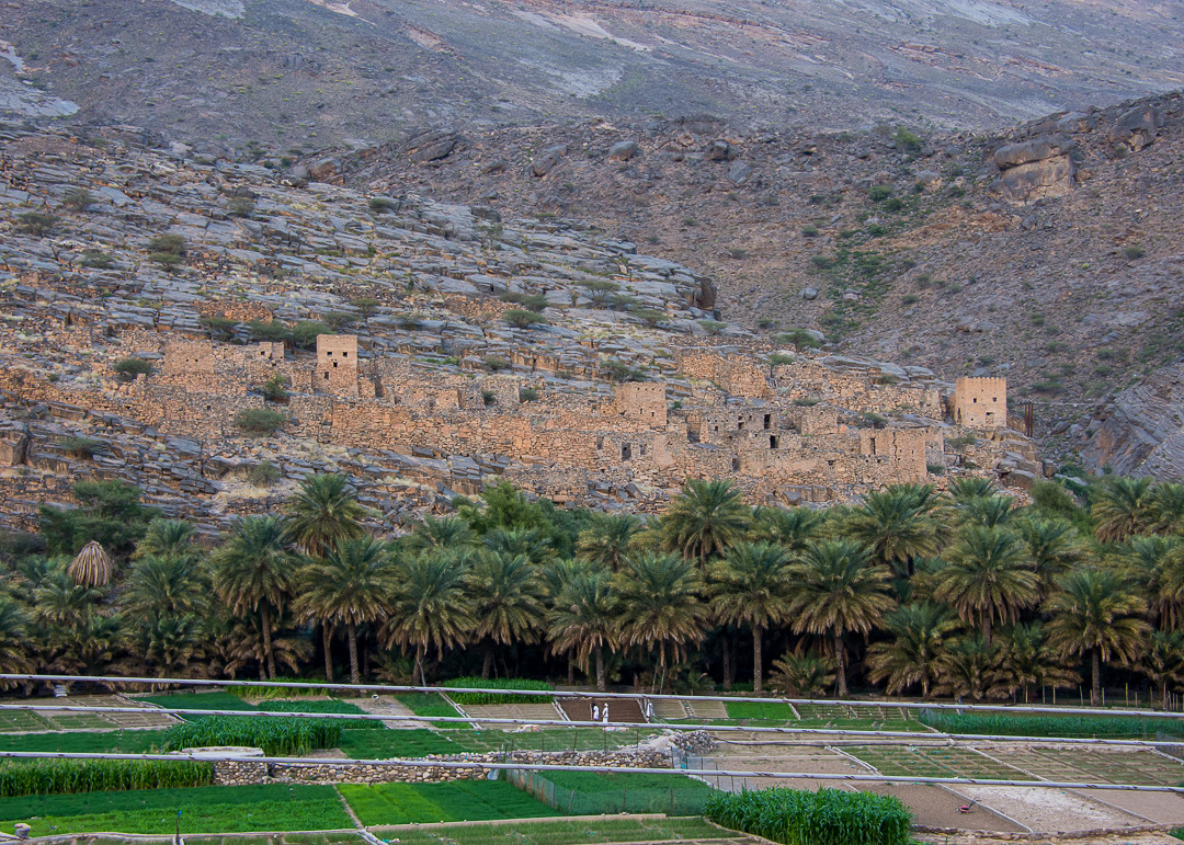 Fortresses and Mountain Villages in Oman's Interior