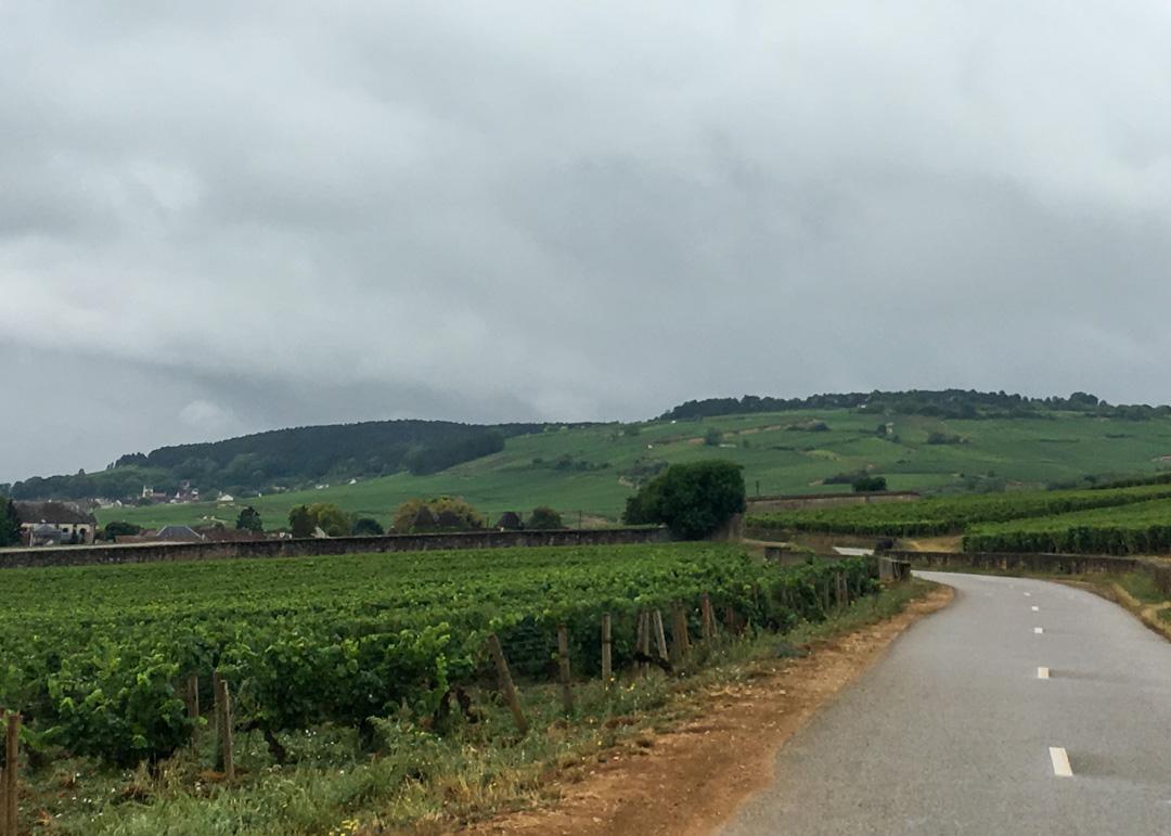 Beaune - The Heart of Burgundy