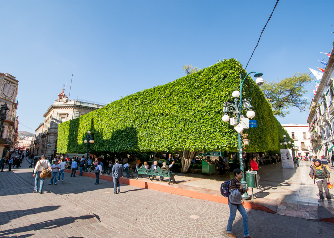 City Cafe Union Square